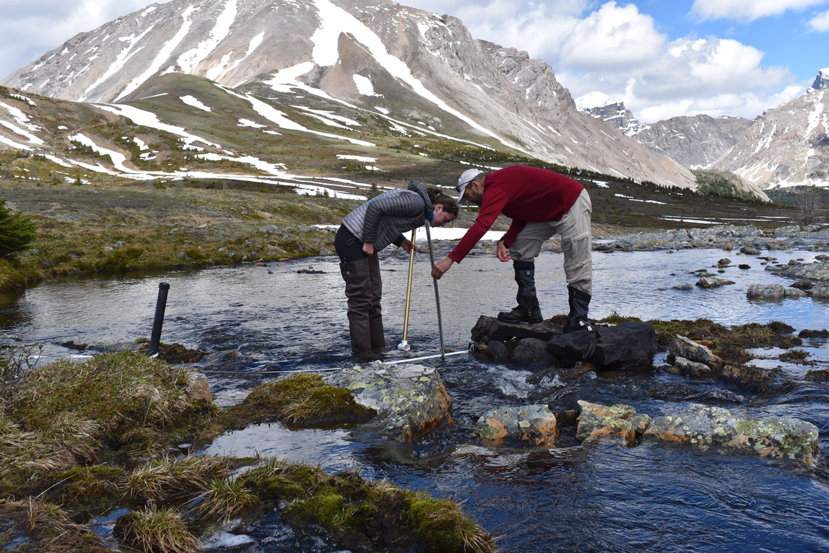 levelogger water level datalogger deployed in alpine lake stilling well