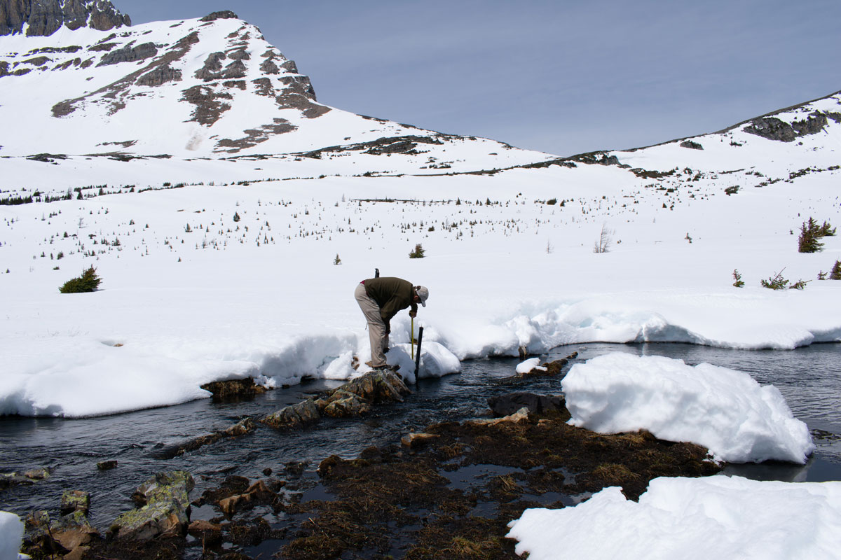 solinst levelogger recording water levels in alpine lake stilling well